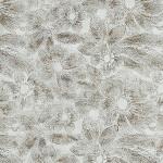 DM Fleur Silver/Brown glatt